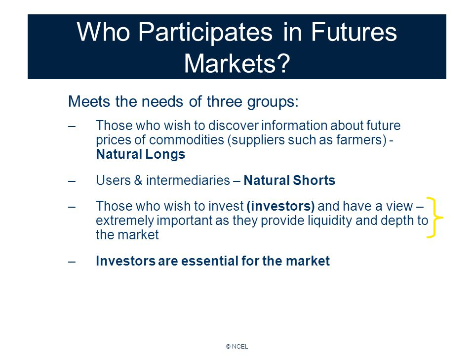 © NCEL Who Participates in Futures Markets.