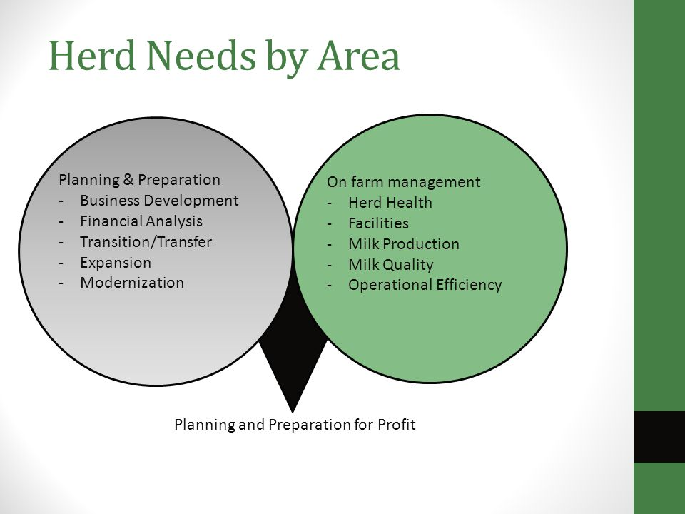Herd Needs by Area Planning & Preparation -Business Development -Financial Analysis -Transition/Transfer -Expansion -Modernization On farm management -Herd Health -Facilities -Milk Production -Milk Quality -Operational Efficiency Planning and Preparation for Profit