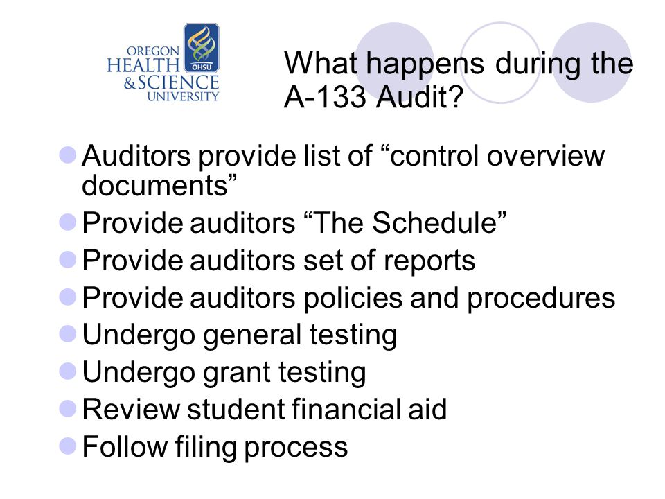 What happens during the A-133 Audit.