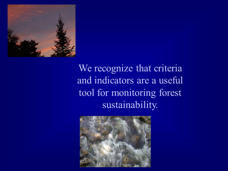 We recognize that criteria and indicators are a useful tool for monitoring forest sustainability.