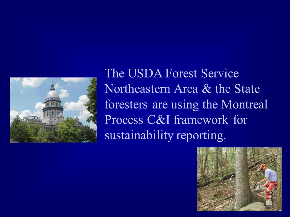 The USDA Forest Service Northeastern Area & the State foresters are using the Montreal Process C&I framework for sustainability reporting.