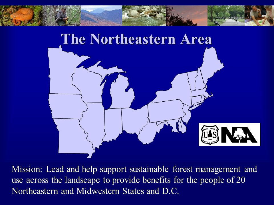 The Northeastern Area Mission: Lead and help support sustainable forest management and use across the landscape to provide benefits for the people of 20 Northeastern and Midwestern States and D.C.