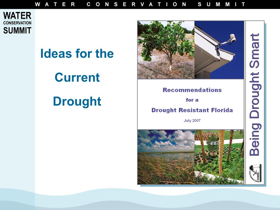 Ideas for the Current Drought