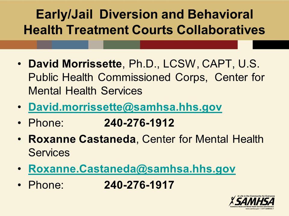 Early/Jail Diversion and Behavioral Health Treatment Courts Collaboratives David Morrissette, Ph.D., LCSW, CAPT, U.S.
