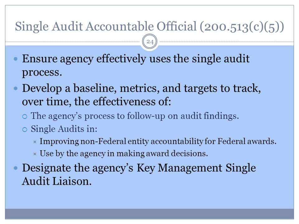 Single Audit Accountable Official (200.513(c)(5)) 24 Ensure agency effectively uses the single audit process.