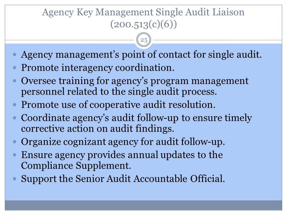 Agency Key Management Single Audit Liaison (200.513(c)(6)) 25 Agency management's point of contact for single audit.