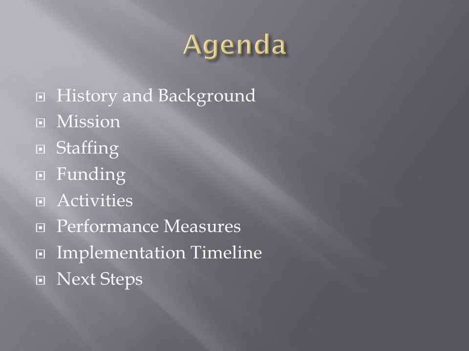  History and Background  Mission  Staffing  Funding  Activities  Performance Measures  Implementation Timeline  Next Steps