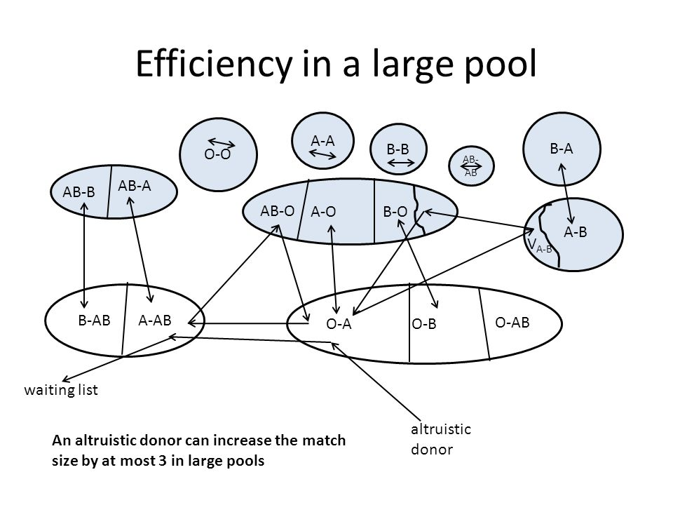 B-A B-AB A-AB V A-B A-O B-O AB-O O-B O-A A-B AB-B AB-A O-AB O-O A-A B-B AB- AB Efficiency in a large pool altruistic donor An altruistic donor can increase the match size by at most 3 in large pools waiting list