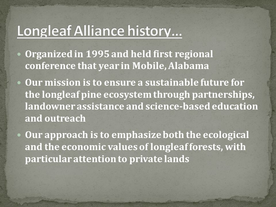 Incorporated in 2007 as a 501(c)(3) non-profit corporation to support longleaf restoration Primary functions are to support longleaf restoration efforts, interact with policy makers at local, state and federal levels, and assist with restoration efforts among partners across the region.