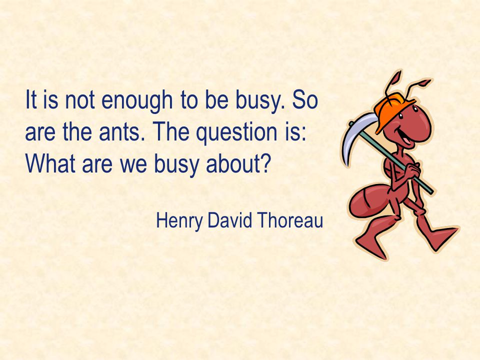 It is not enough to be busy. So are the ants. The question is: What are we busy about? Henry David Thoreau
