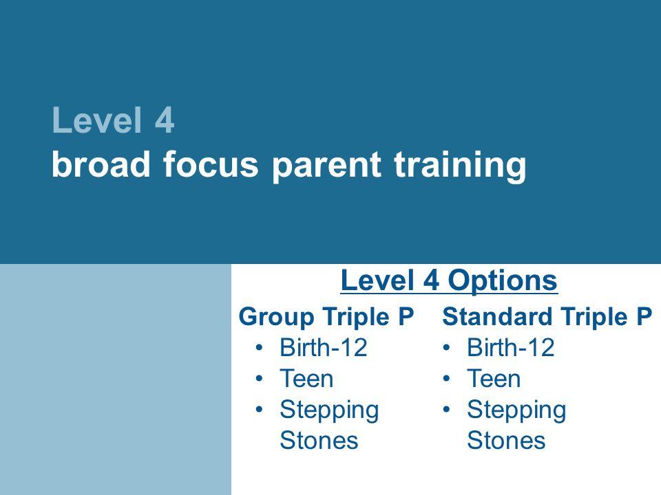 Level 4 broad focus parent training Group Triple P Birth-12 Teen Stepping Stones Standard Triple P Birth-12 Teen Stepping Stones Level 4 Options