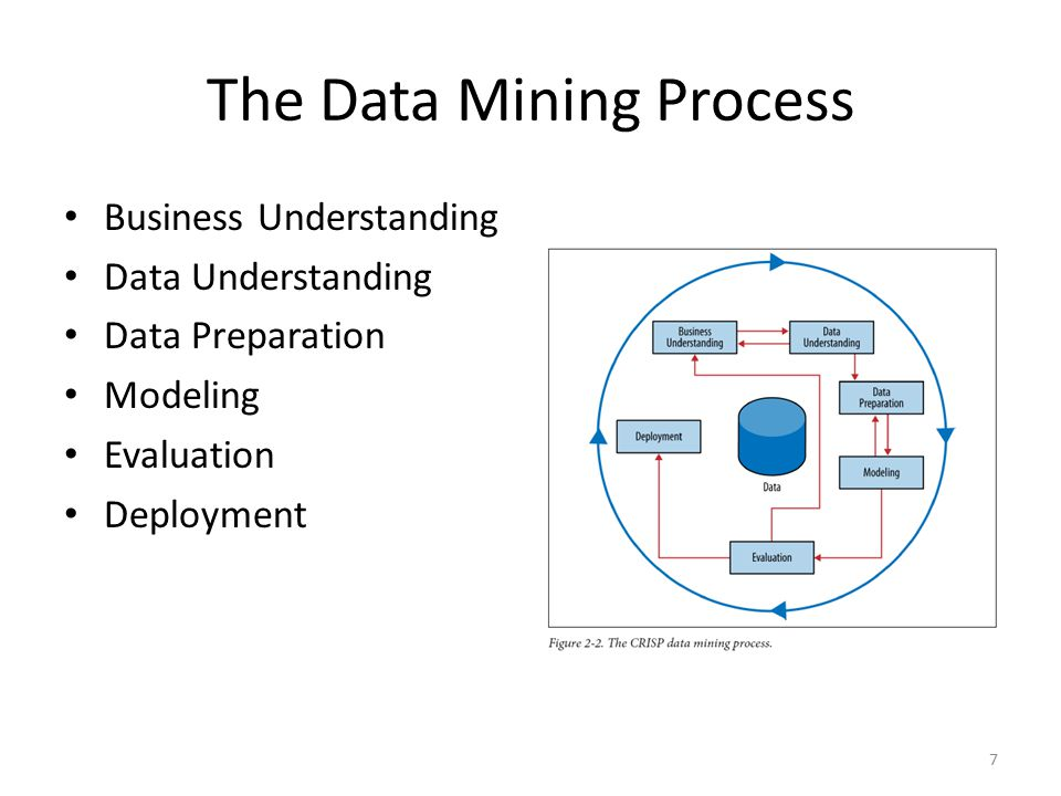 The Data Mining Process Business Understanding Data Understanding Data Preparation Modeling Evaluation Deployment 7