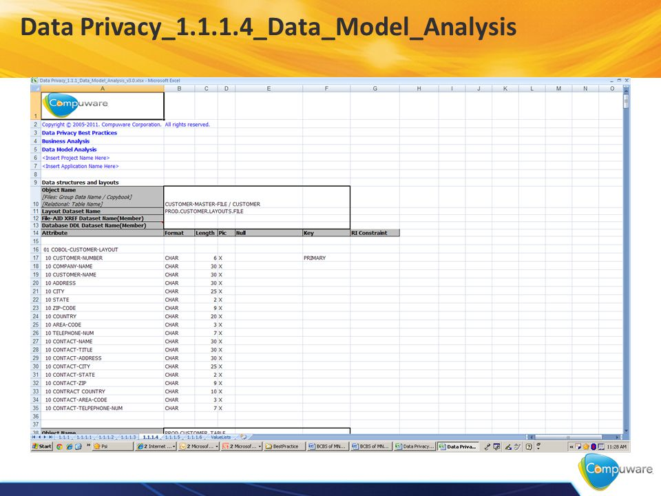 Data Privacy_1.1.1.4_Data_Model_Analysis