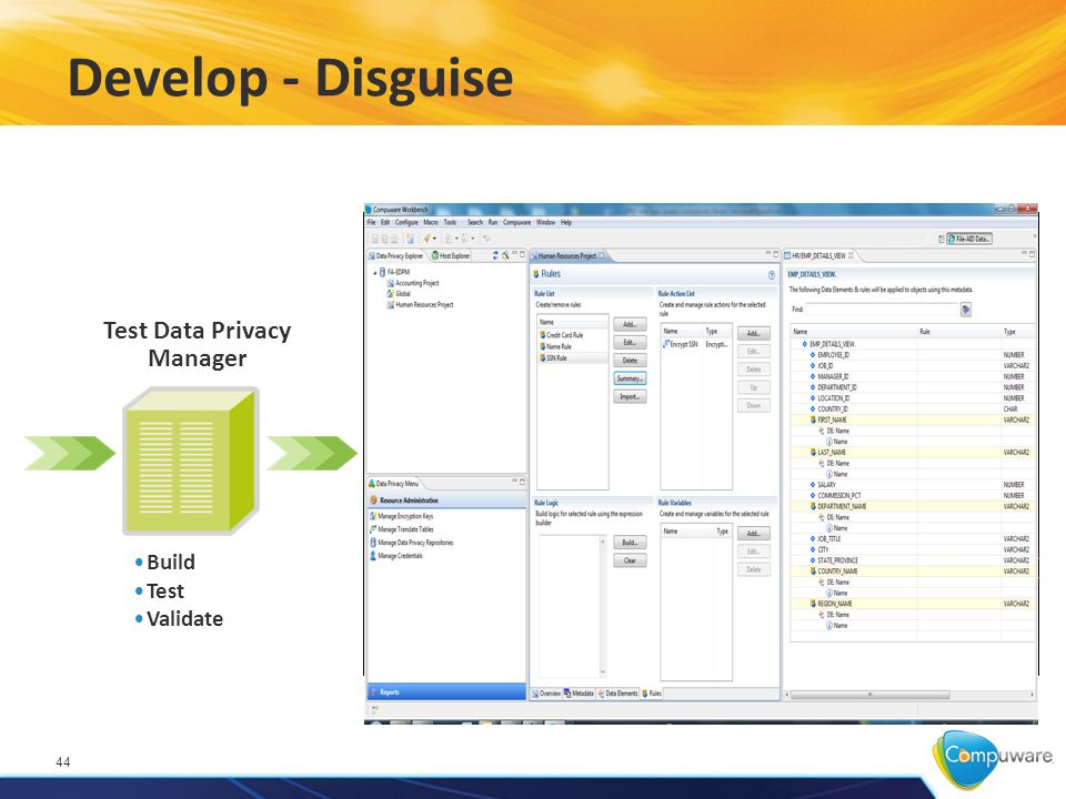Develop - Disguise 44 Build Test Validate Test Data Privacy Manager