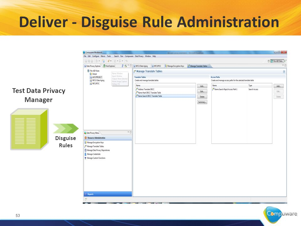 Deliver - Disguise Rule Administration 53 Disguise Rules Test Data Privacy Manager