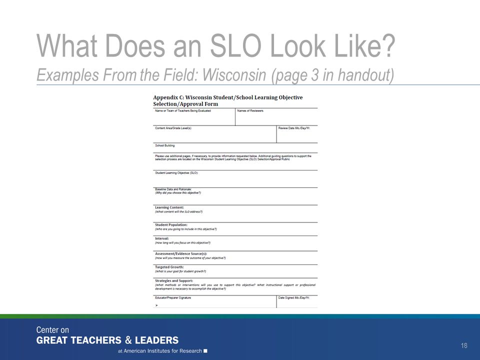 18 What Does an SLO Look Like? Examples From the Field: Wisconsin (page 3 in handout)