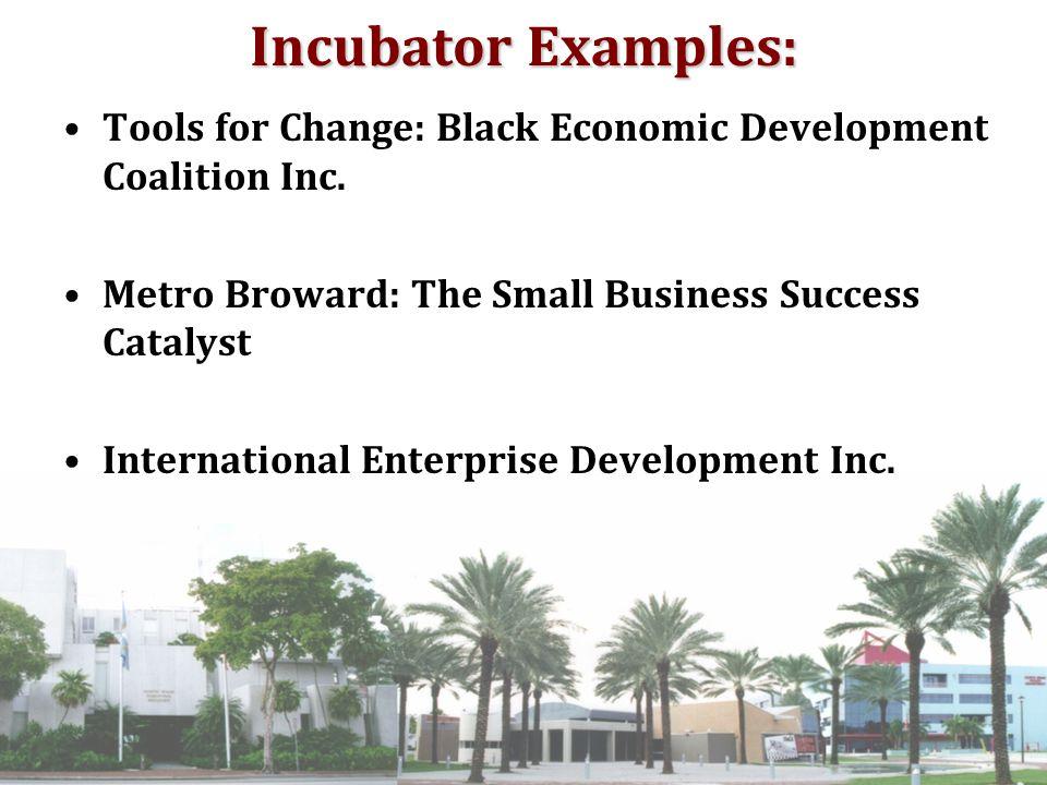 Incubator Examples: Tools for Change: Black Economic Development Coalition Inc.