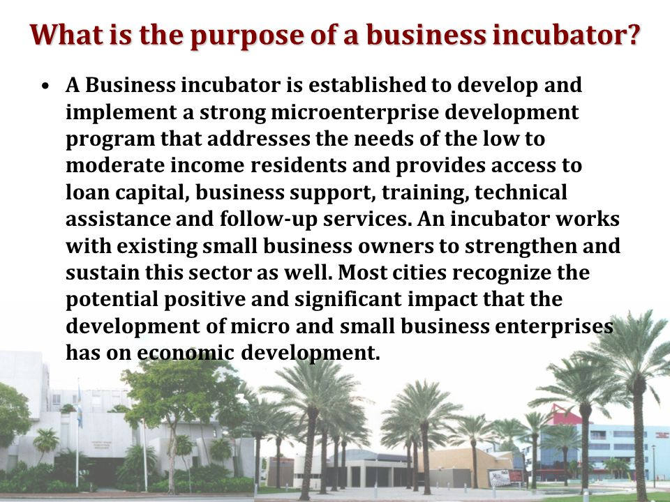What is the purpose of a business incubator.