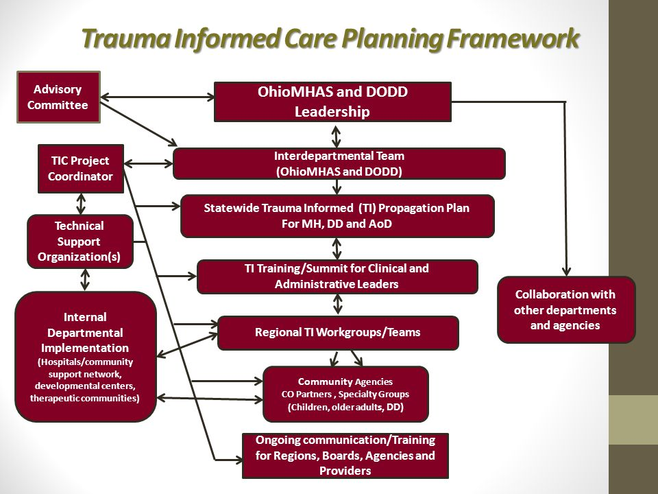 Trauma Informed Care Planning Framework OhioMHAS and DODD Leadership Interdepartmental Team (OhioMHAS and DODD) Statewide Trauma Informed (TI) Propagation Plan For MH, DD and AoD TI Training/Summit for Clinical and Administrative Leaders Regional TI Workgroups/Teams Community Agencies CO Partners, Specialty Groups (Children, older adult s, DD) Internal Departmental Implementation (Hospitals/community support network, developmental centers, therapeutic communities) Collaboration with other departments and agencies Ongoing communication/Training for Regions, Boards, Agencies and Providers Advisory Committee TIC Project Coordinator Technical Support Organization(s)