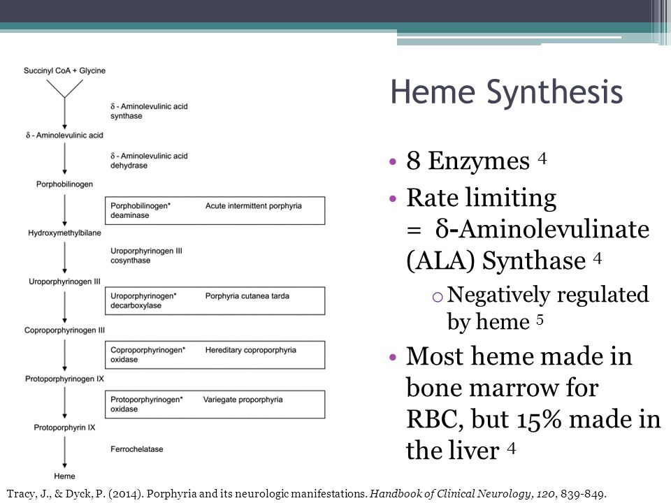 8 Enzymes 4 Rate limiting = δ-Aminolevulinate (ALA) Synthase 4 o Negatively regulated by heme 5 Most heme made in bone marrow for RBC, but 15% made in the liver 4 Heme Synthesis Tracy, J., & Dyck, P.