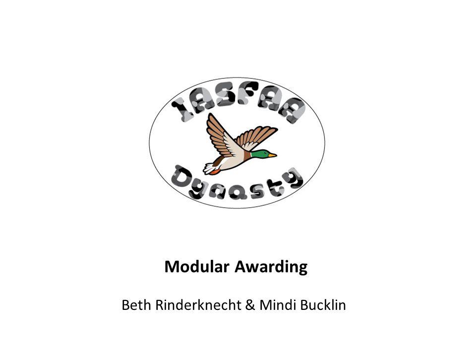 Modular Awarding Beth Rinderknecht & Mindi Bucklin