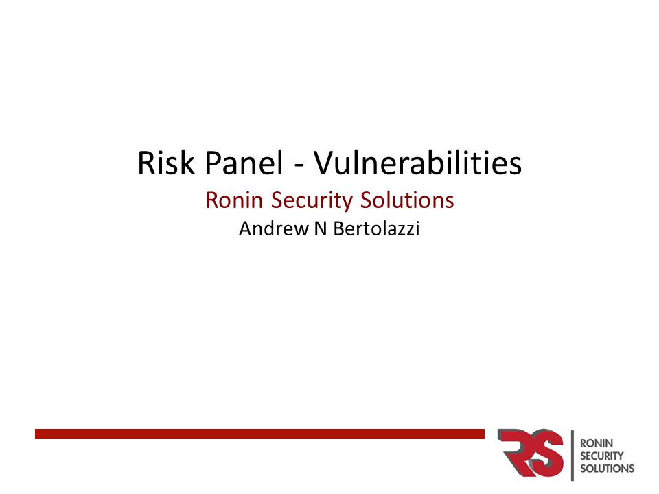 Risk Panel - Vulnerabilities Ronin Security Solutions Andrew N Bertolazzi