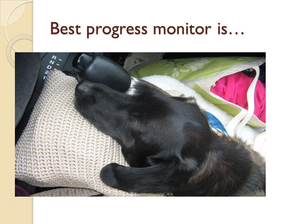 Best progress monitor is…