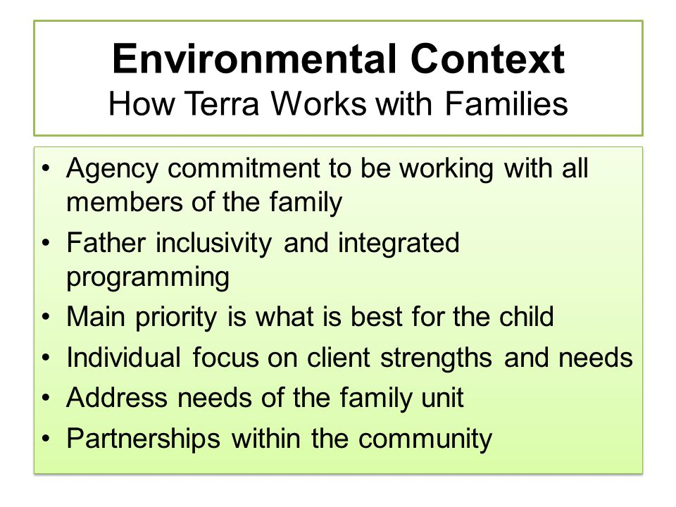 Environmental Context How Terra Works with Families Agency commitment to be working with all members of the family Father inclusivity and integrated p