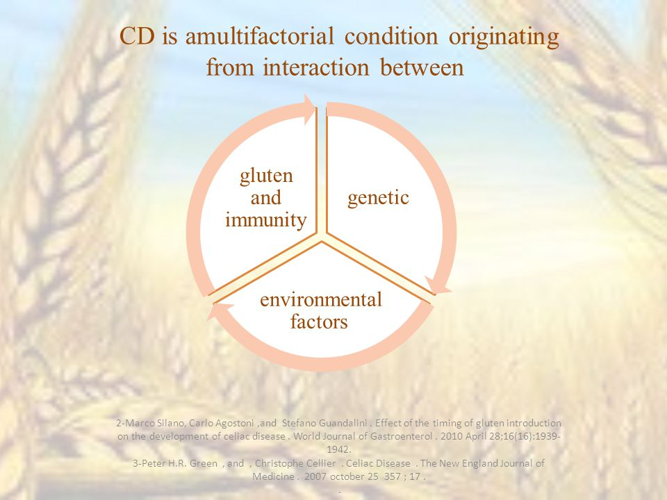genetic environmental factors gluten and immunity CD is amultifactorial condition originating from interaction between 2-Marco Silano, Carlo Agostoni,and Stefano Guandalini.