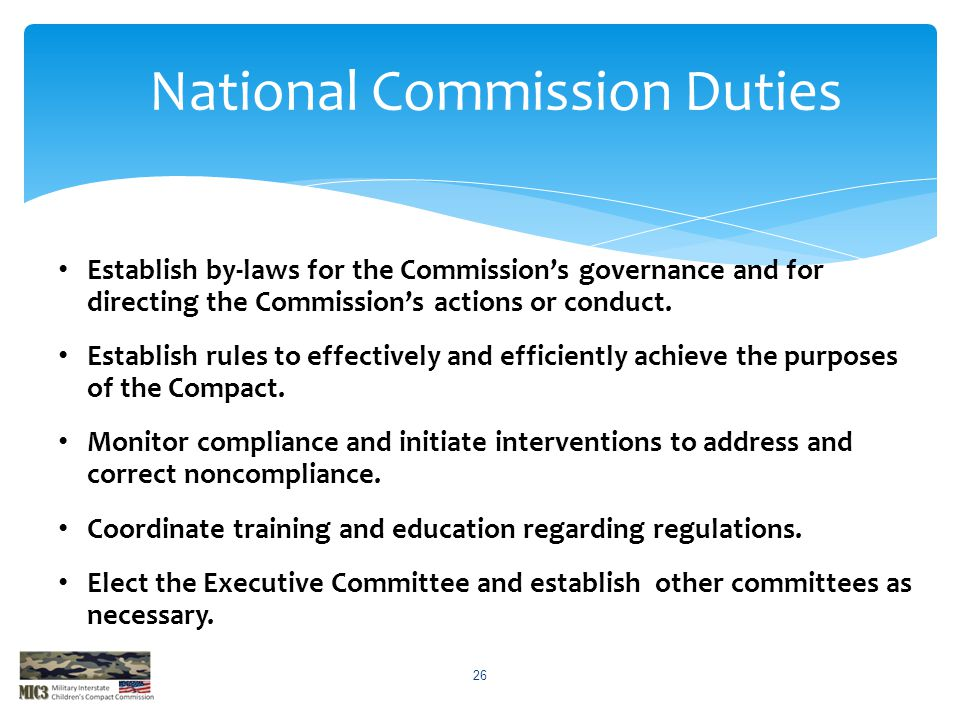 Establish by-laws for the Commission's governance and for directing the Commission's actions or conduct. Establish rules to effectively and efficientl
