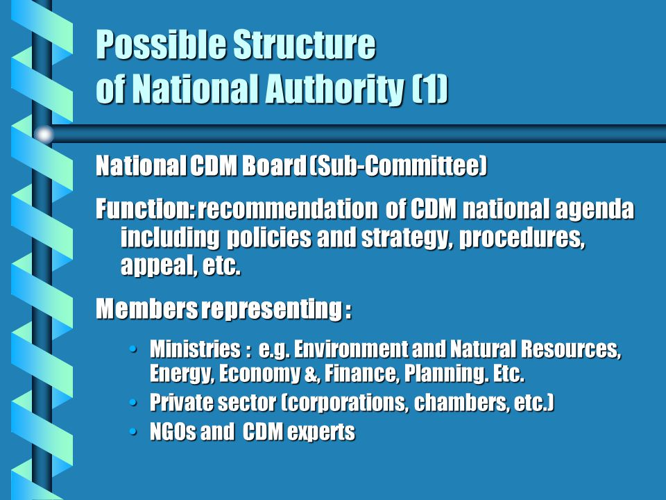 Possible Structure of National Authority (1) National CDM Board (Sub-Committee) Function: recommendation of CDM national agenda including policies and