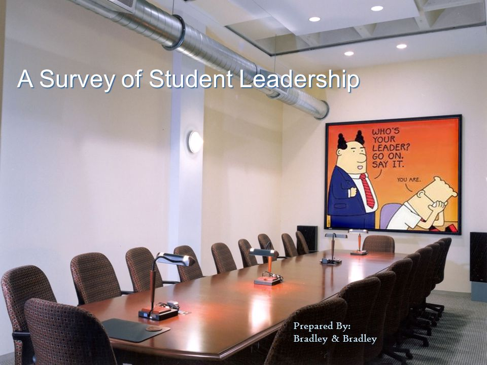 A Survey of Student Leadership Prepared By: Bradley & Bradley