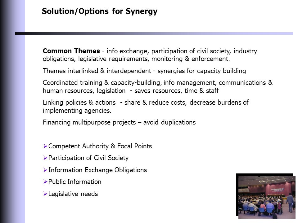 Solution/Options for Synergy Common Themes - info exchange, participation of civil society, industry obligations, legislative requirements, monitoring