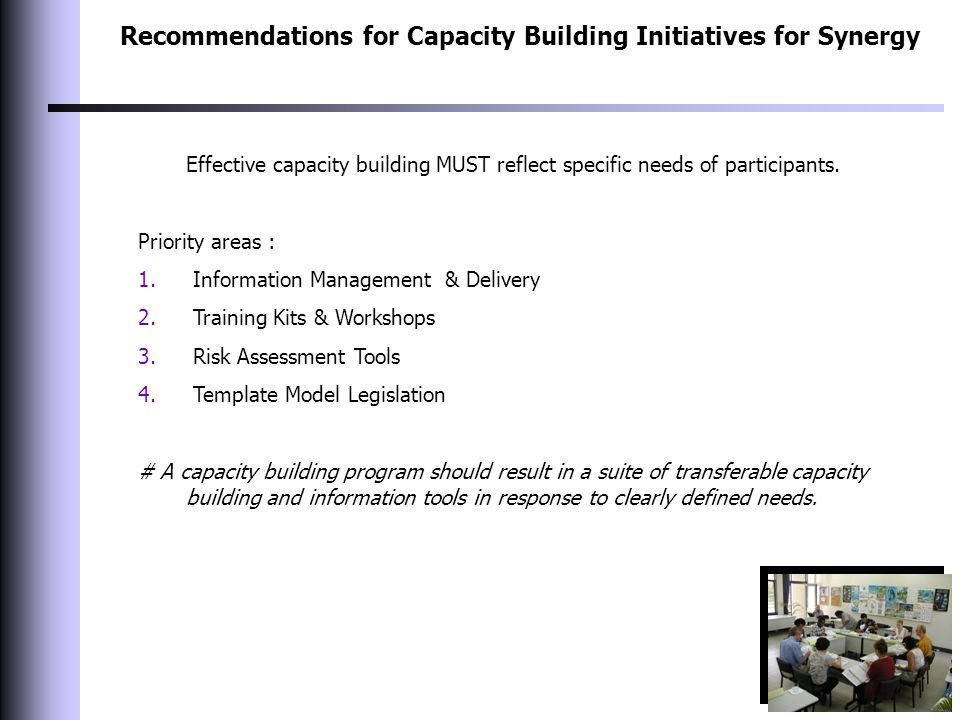 Recommendations for Capacity Building Initiatives for Synergy Effective capacity building MUST reflect specific needs of participants. Priority areas