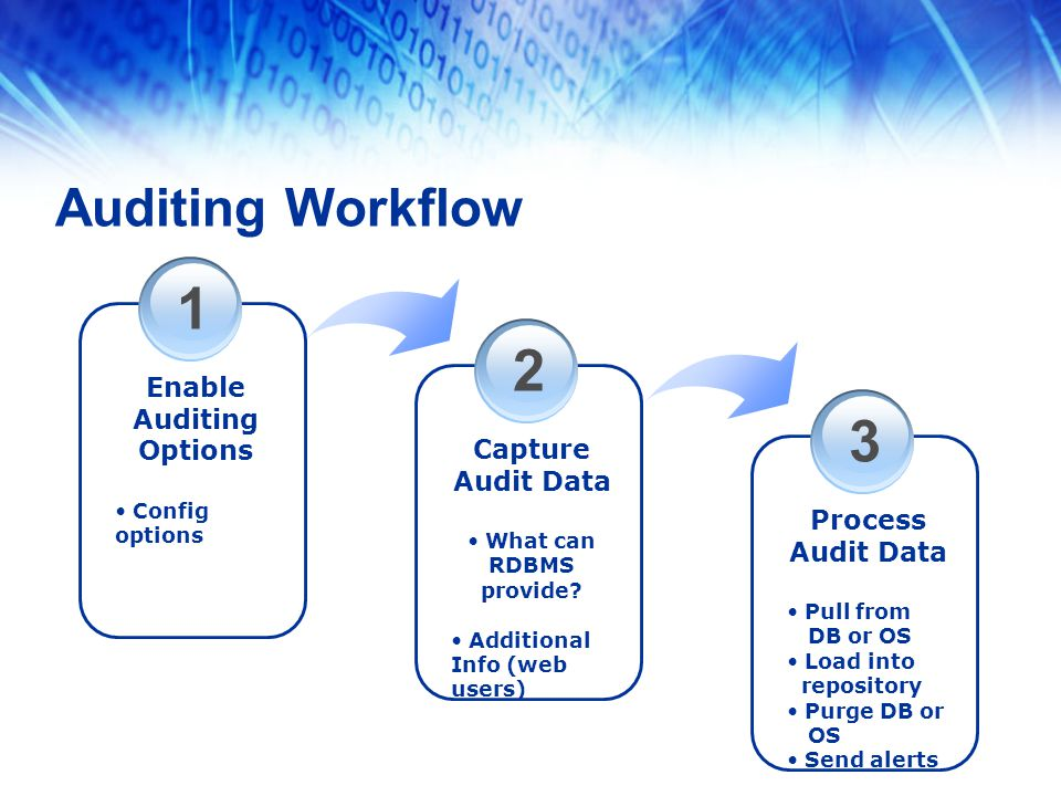 1 Enable Auditing Options Config options 2 Capture Audit Data What can RDBMS provide.