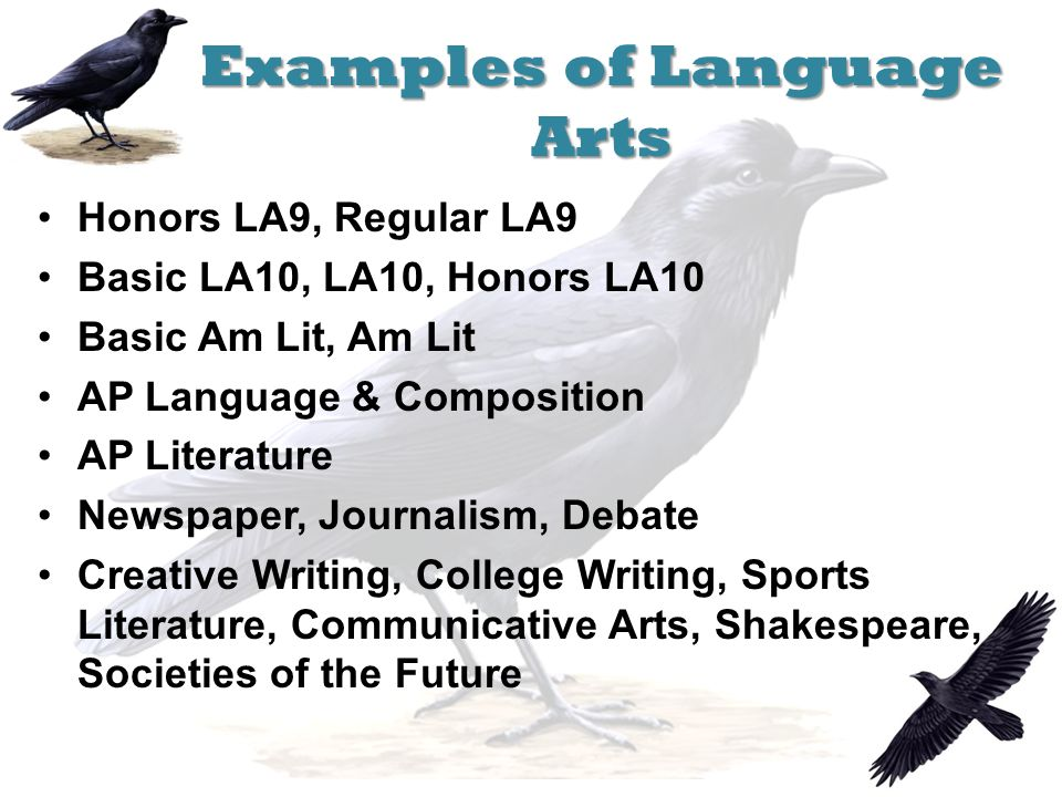 Examples of Language Arts Honors LA9, Regular LA9 Basic LA10, LA10, Honors LA10 Basic Am Lit, Am Lit AP Language & Composition AP Literature Newspaper, Journalism, Debate Creative Writing, College Writing, Sports Literature, Communicative Arts, Shakespeare, Societies of the Future
