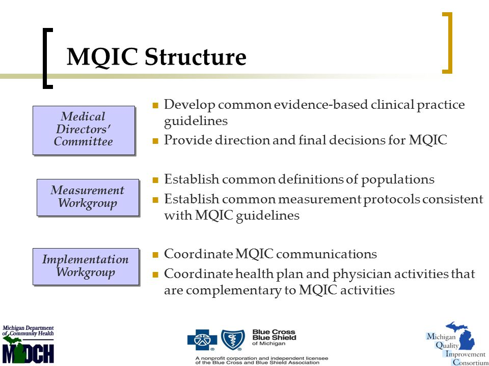 MQIC Structure Develop common evidence-based clinical practice guidelines Provide direction and final decisions for MQIC Establish common definitions of populations Establish common measurement protocols consistent with MQIC guidelines Coordinate MQIC communications Coordinate health plan and physician activities that are complementary to MQIC activities Medical Directors' Committee Measurement Workgroup Implementation Workgroup Implementation Workgroup