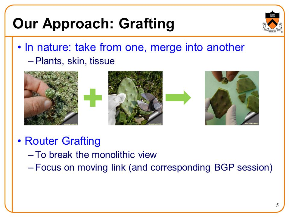 Our Approach: Grafting In nature: take from one, merge into another –Plants, skin, tissue Router Grafting –To break the monolithic view –Focus on moving link (and corresponding BGP session) 5