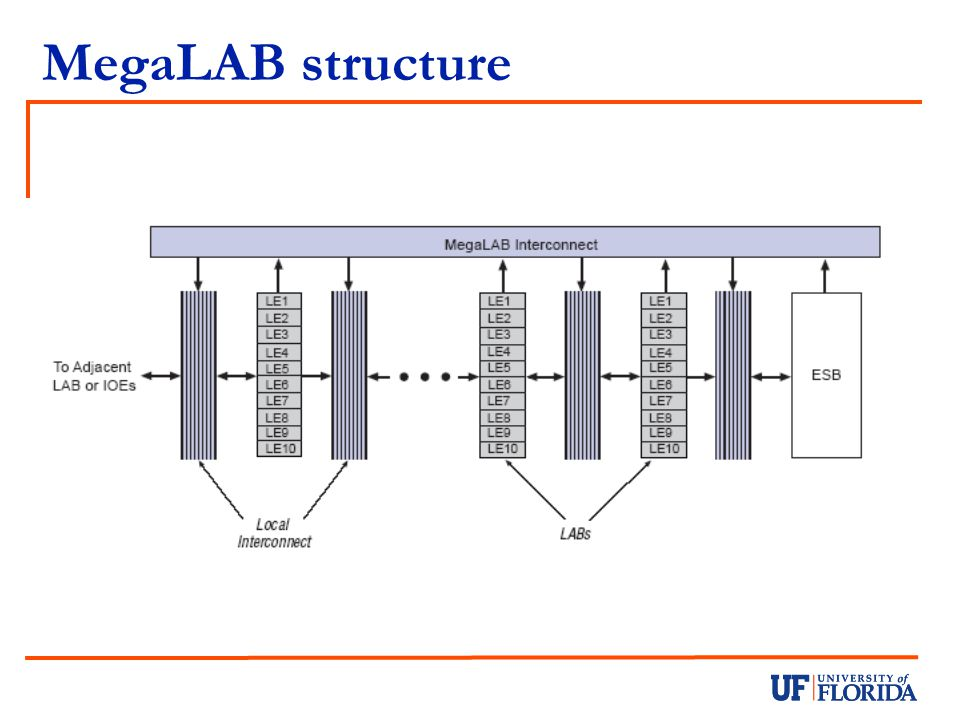 MegaLAB structure