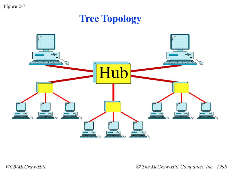 Figure 2-7 WCB/McGraw-Hill  The McGraw-Hill Companies, Inc., 1998 Tree Topology