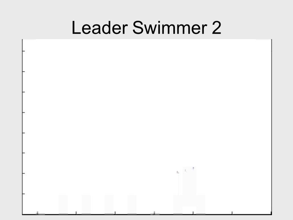 Leader Swimmer 2