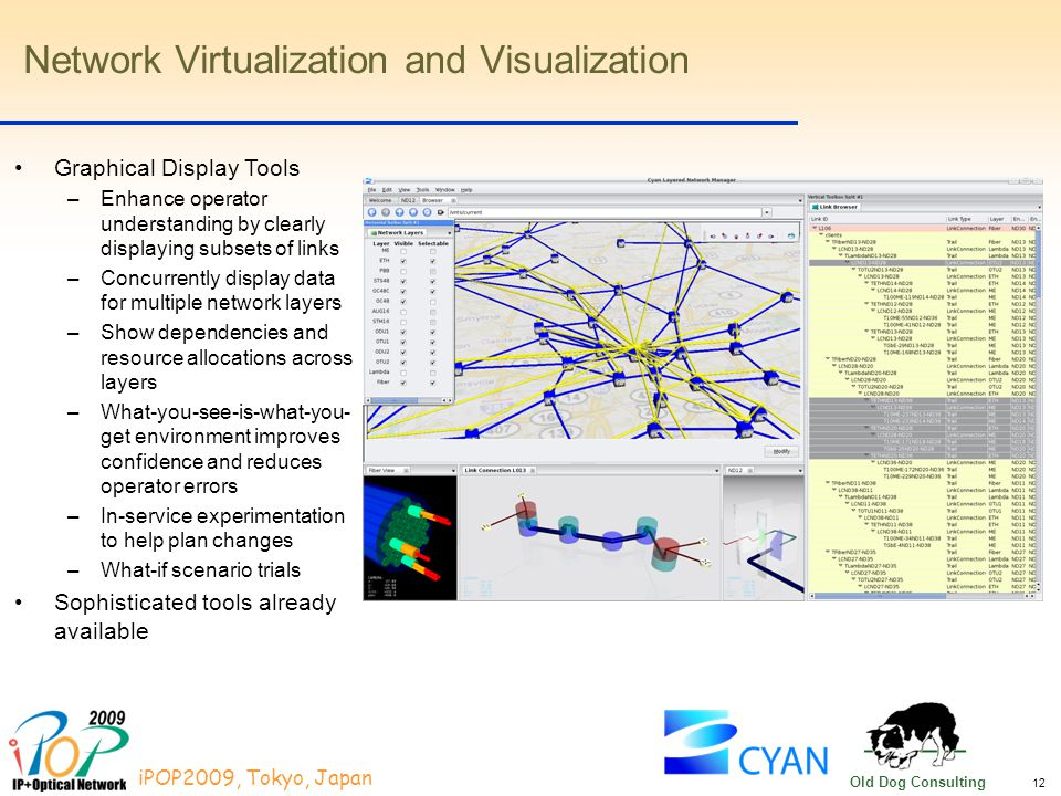 12 iPOP2009, Tokyo, Japan Old Dog Consulting Network Virtualization and Visualization Graphical Display Tools –Enhance operator understanding by clearly displaying subsets of links –Concurrently display data for multiple network layers –Show dependencies and resource allocations across layers –What-you-see-is-what-you- get environment improves confidence and reduces operator errors –In-service experimentation to help plan changes –What-if scenario trials Sophisticated tools already available