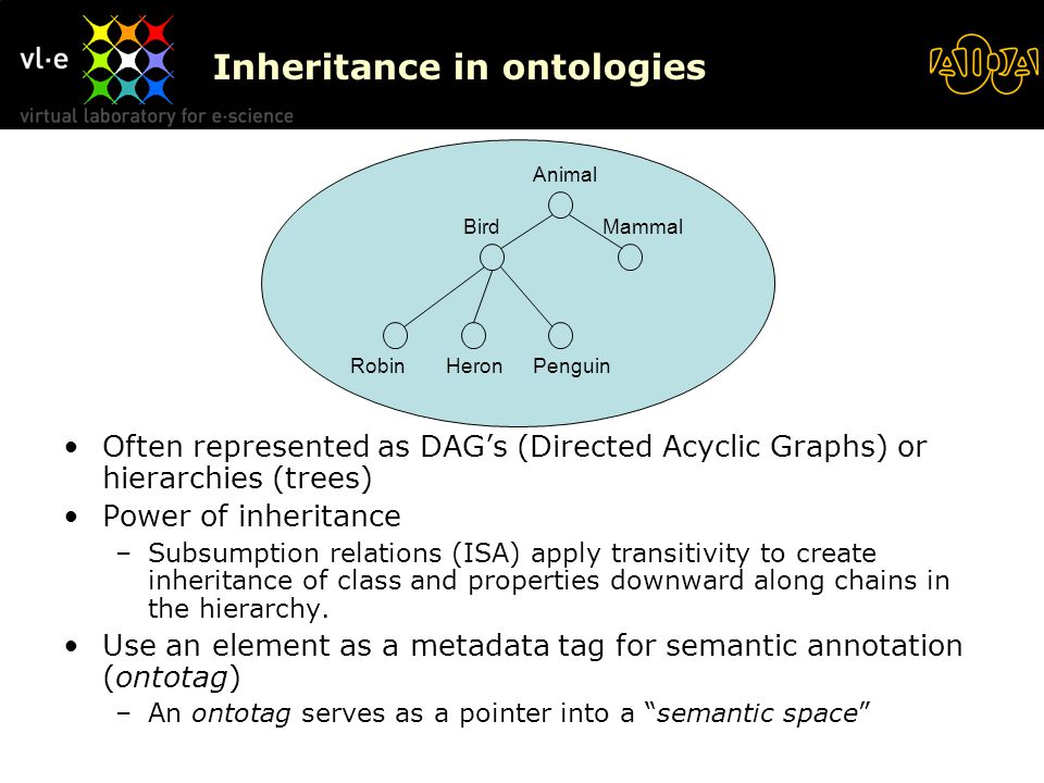 Inheritance in ontologies Often represented as DAG's (Directed Acyclic Graphs) or hierarchies (trees) Power of inheritance –Subsumption relations (ISA) apply transitivity to create inheritance of class and properties downward along chains in the hierarchy.