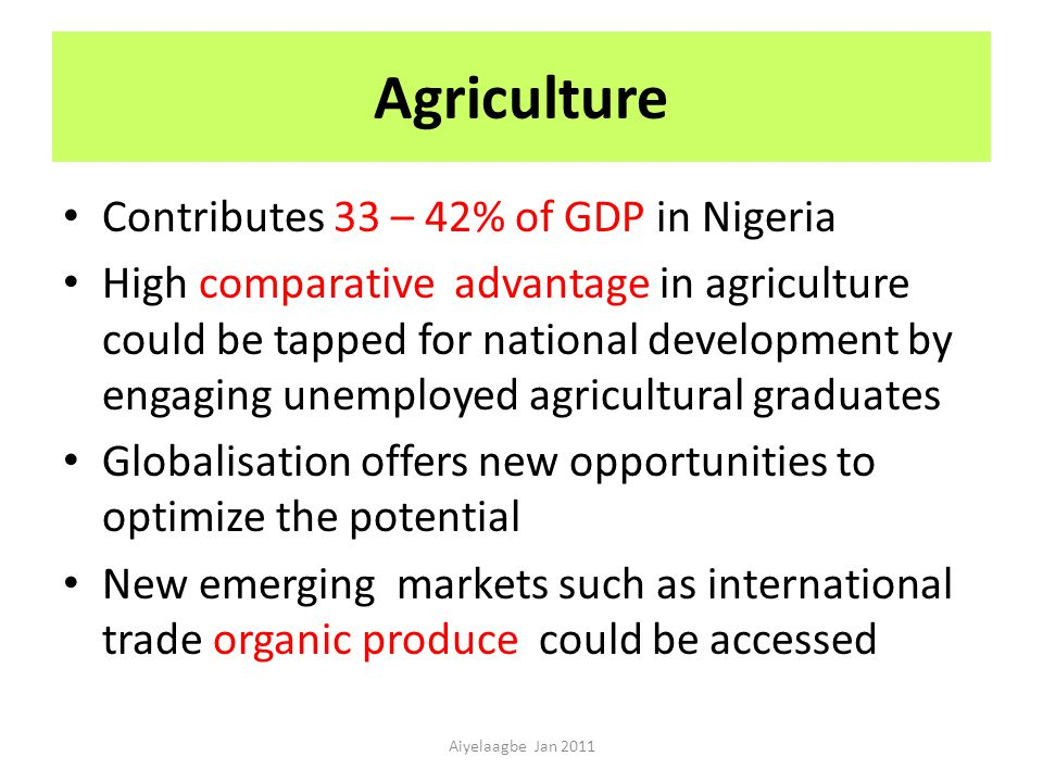 Agriculture Contributes 33 – 42% of GDP in Nigeria High comparative advantage in agriculture could be tapped for national development by engaging unemployed agricultural graduates Globalisation offers new opportunities to optimize the potential New emerging markets such as international trade organic produce could be accessed Aiyelaagbe Jan 2011
