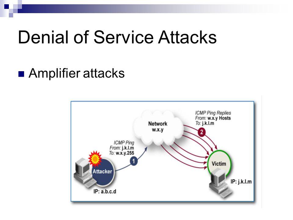 Denial of Service Attacks Amplifier attacks