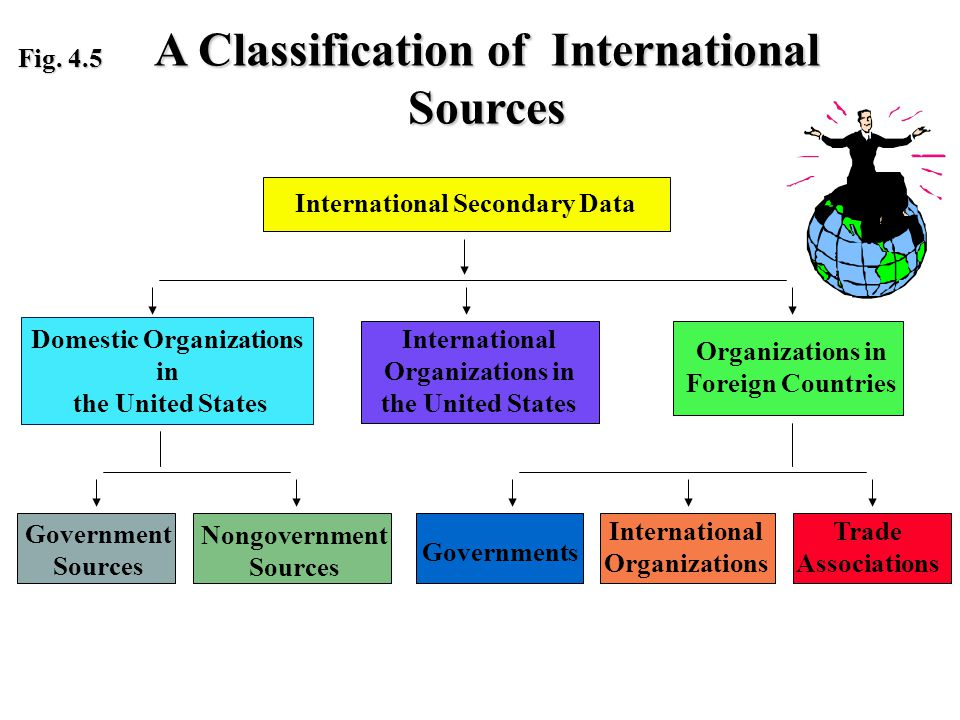 International Organizations Domestic Organizations in the United States International Secondary Data International Organizations in the United States