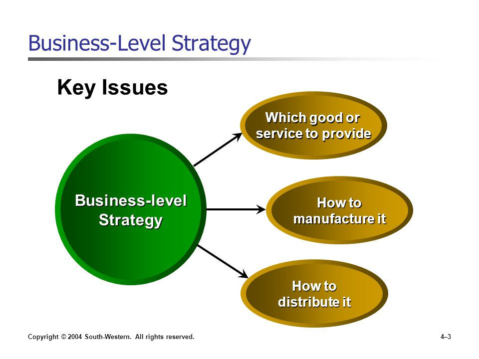 Copyright © 2004 South-Western. All rights reserved.4–3 Key Issues Business-Level Strategy Business-levelStrategy Which good or service to provide How