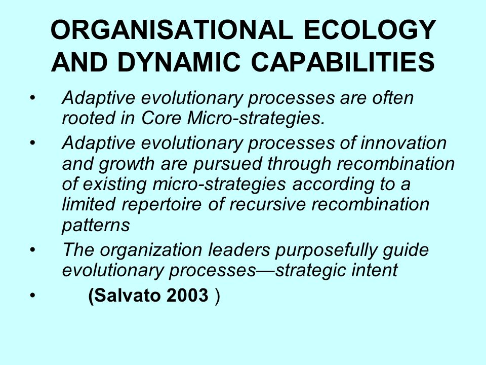 ORGANISATIONAL ECOLOGY AND DYNAMIC CAPABILITIES Adaptive evolutionary processes are often rooted in Core Micro-strategies.