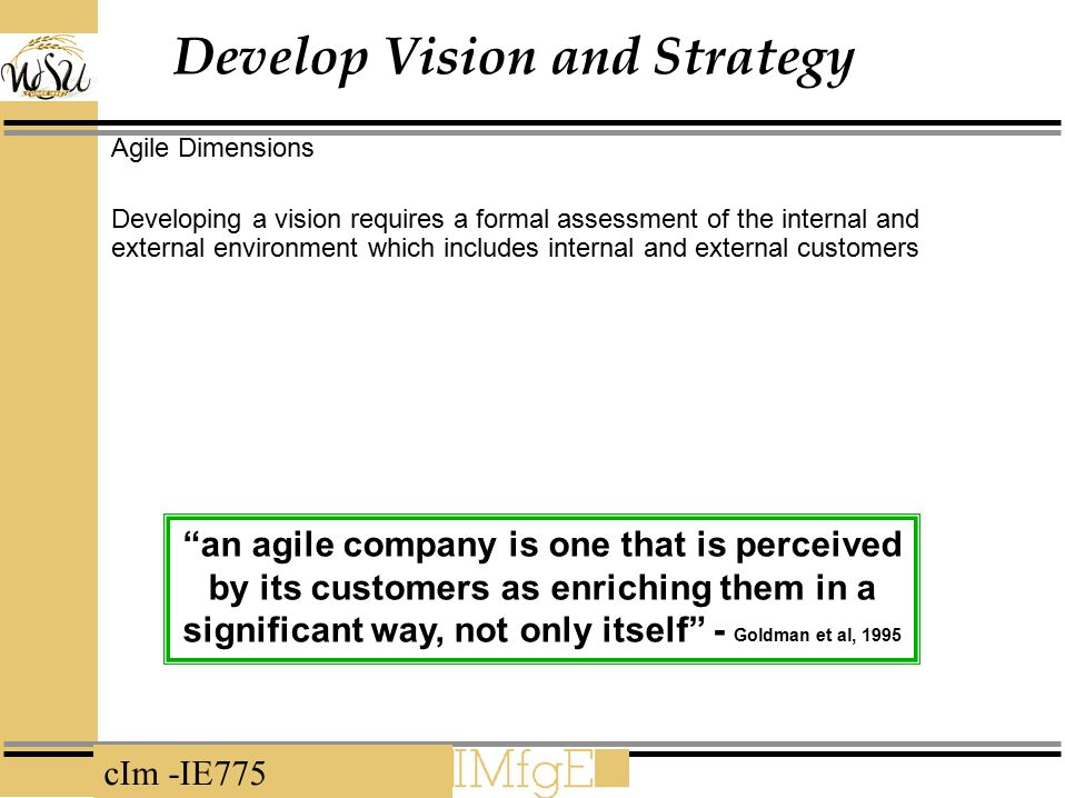 cIm -IE775 Develop Vision and Strategy Agile Dimensions Developing a vision requires a formal assessment of the internal and external environment whic