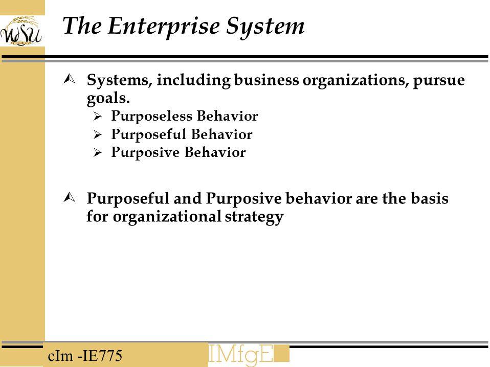 cIm -IE775 The Enterprise System  Systems, including business organizations, pursue goals.  Purposeless Behavior  Purposeful Behavior  Purposive B